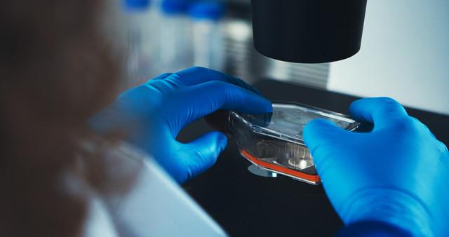Cyto SMART Bedrijfsfilm Cellen onder microscoop